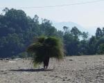 Zelfsturend-leren-Nepal-05